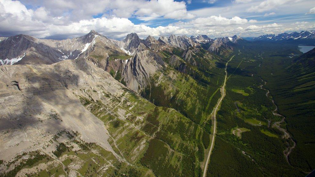 Icefields Parkway mostrando escenas tranquilas, montañas y vistas de paisajes