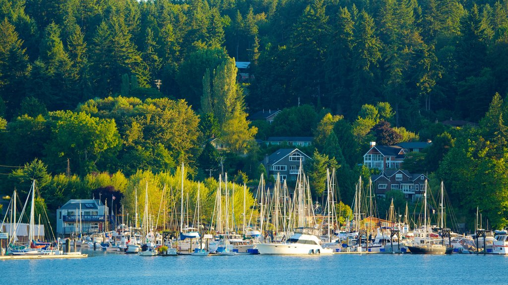 Bainbridge Island featuring a coastal town, a marina and a bay or harbor