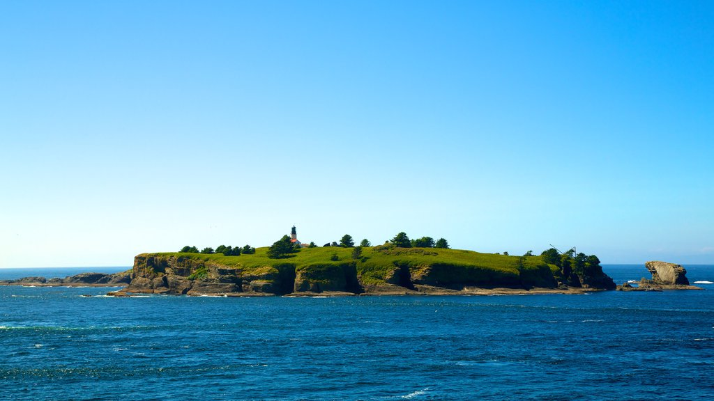 Cape Flattery showing island views, general coastal views and landscape views