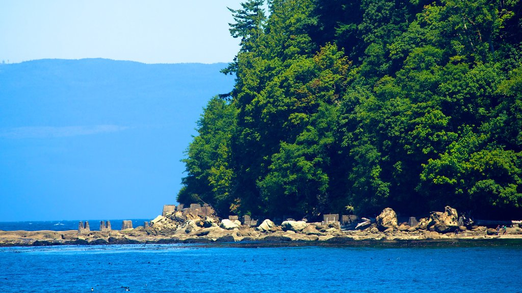 Clallam Bay featuring general coastal views