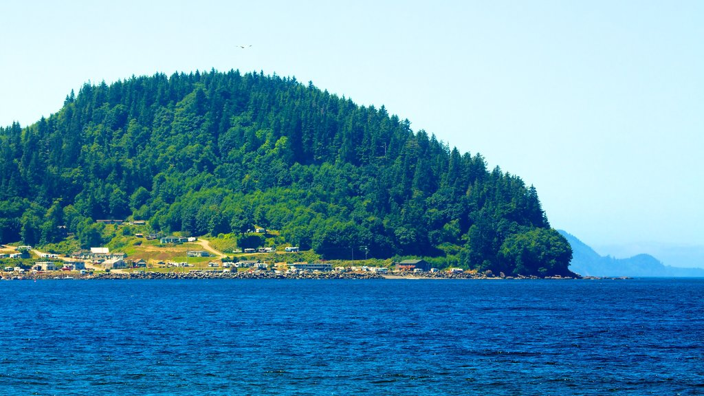 Clallam Bay featuring forests, a coastal town and general coastal views