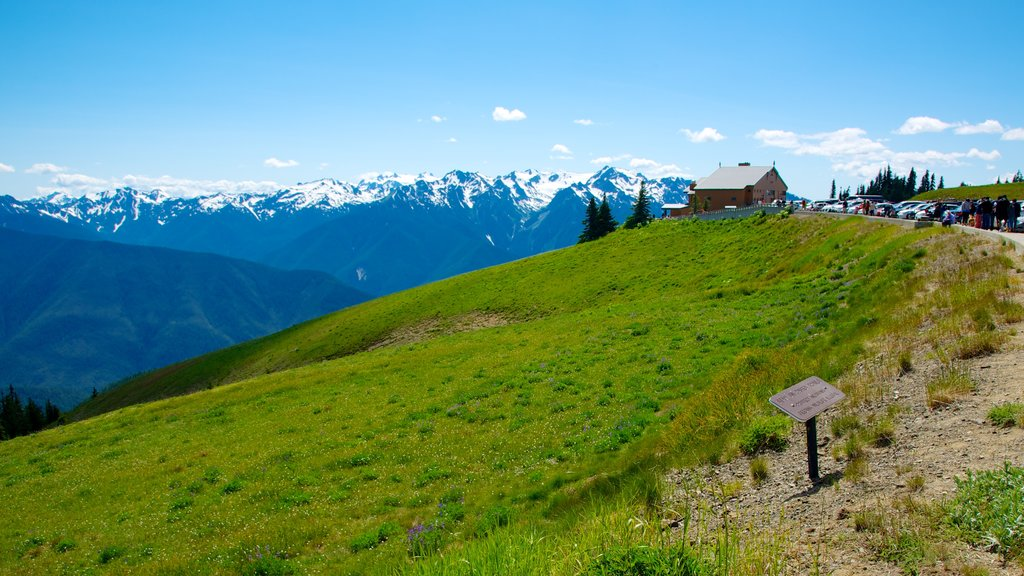 Hurricane Ridge Visitors Center showing landscape views and mountains