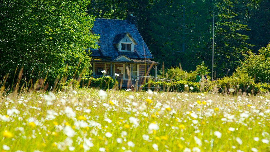 Washington which includes tranquil scenes, wildflowers and a house