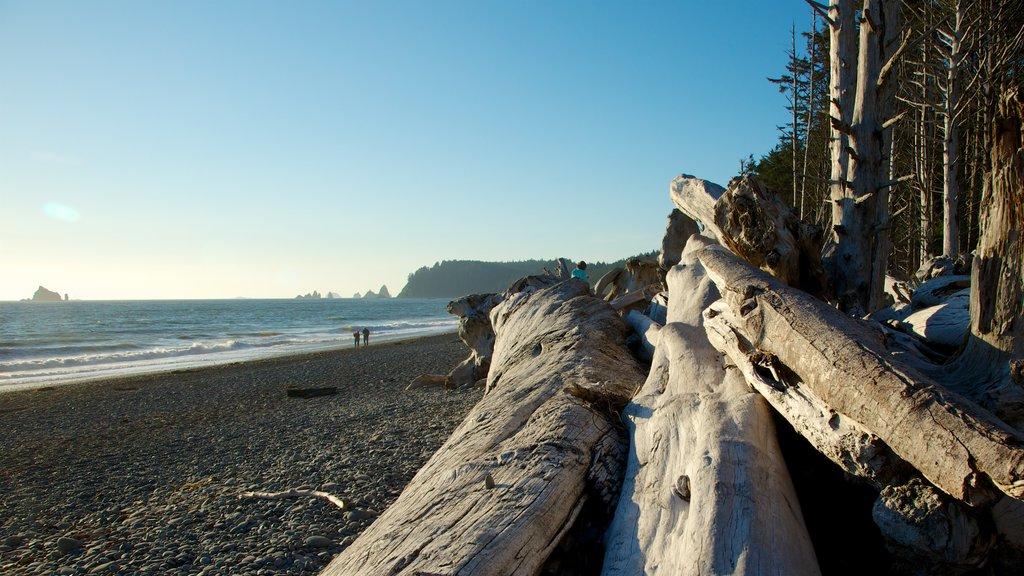 Rialto Beach which includes a pebble beach, landscape views and general coastal views