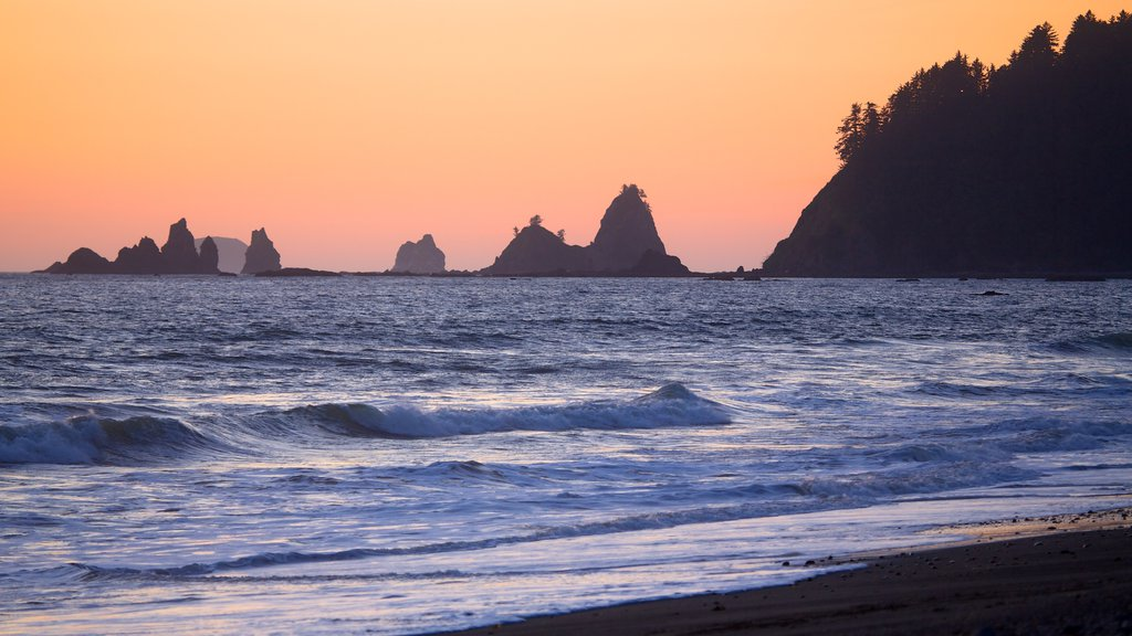 Rialto Beach showing landscape views, island images and a beach