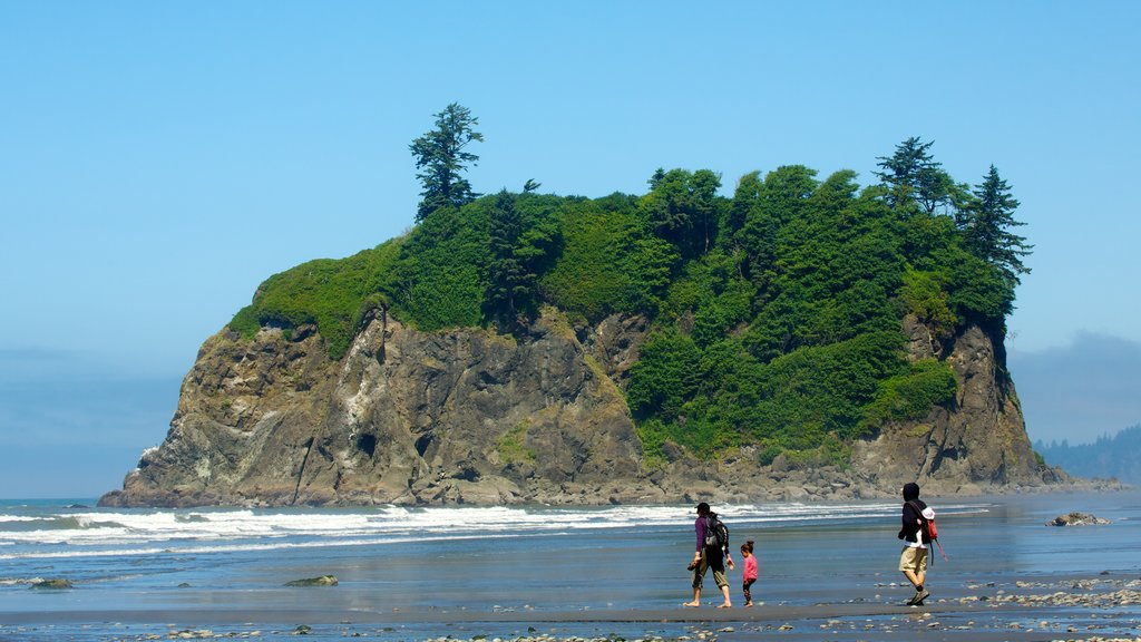 Ruby Beach showing general coastal views as well as a family