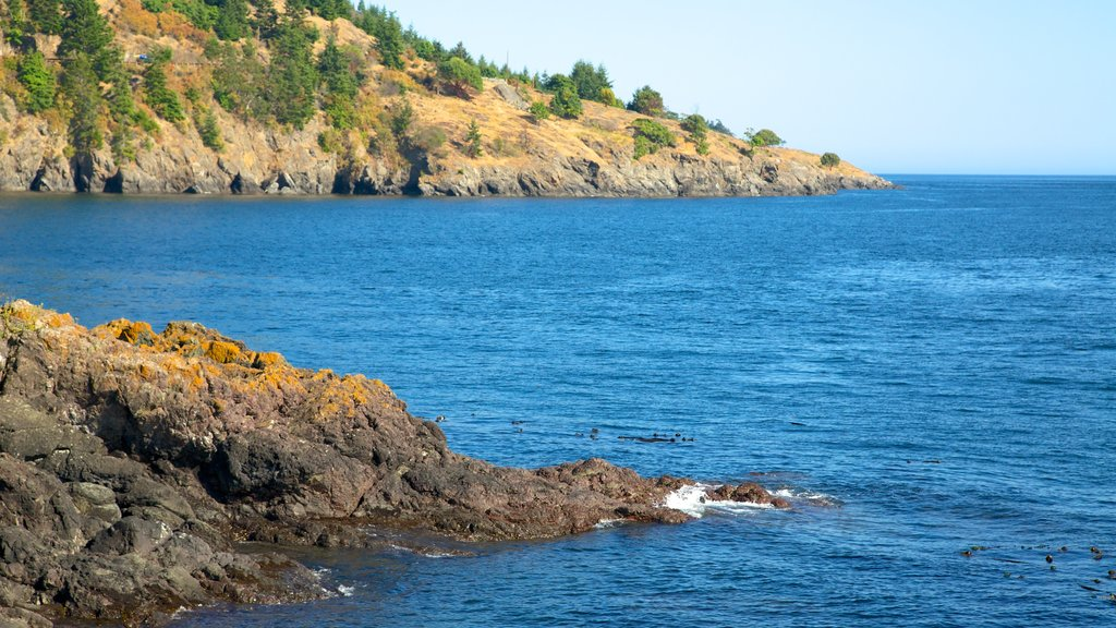 Lime Kiln Point State Park which includes rocky coastline, a bay or harbor and general coastal views