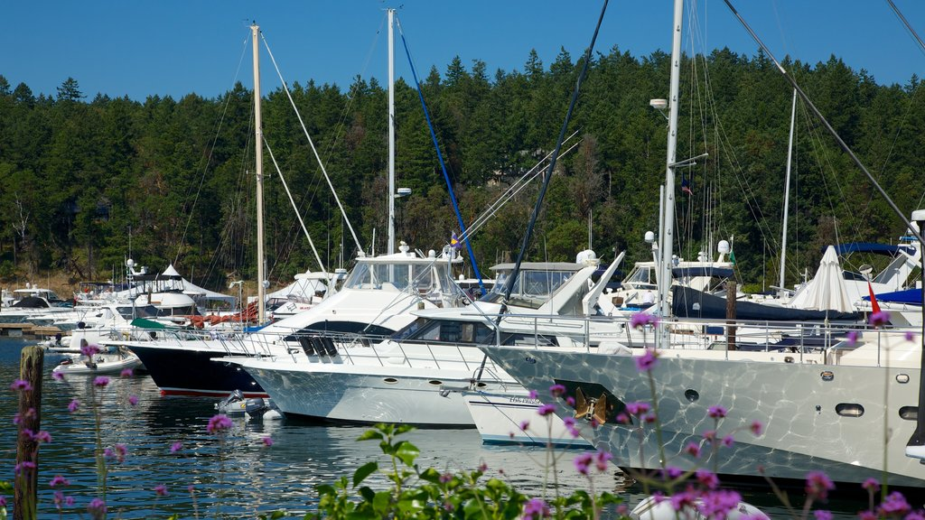 Roche Harbor which includes a marina, sailing and a bay or harbor