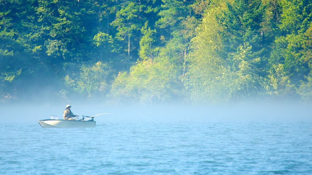 Washington showing mist or fog, fishing and a lake or waterhole