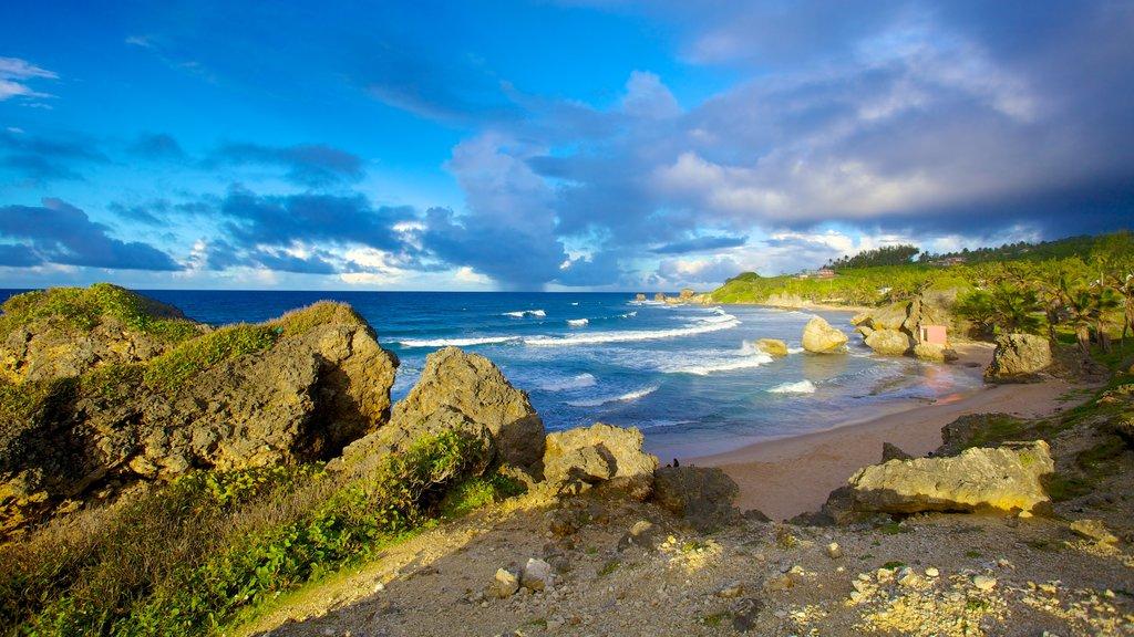 Bathsheba showing landscape views, a sandy beach and tropical scenes