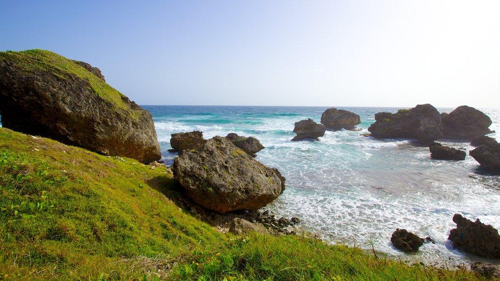 Bathsheba featuring landscape views and rugged coastline