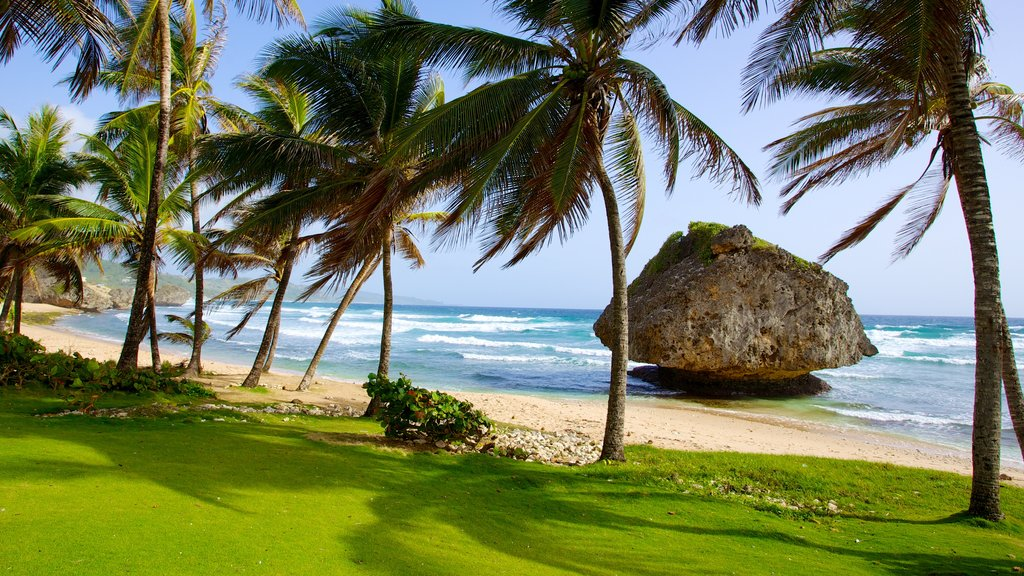 Bathsheba which includes landscape views, tropical scenes and rugged coastline