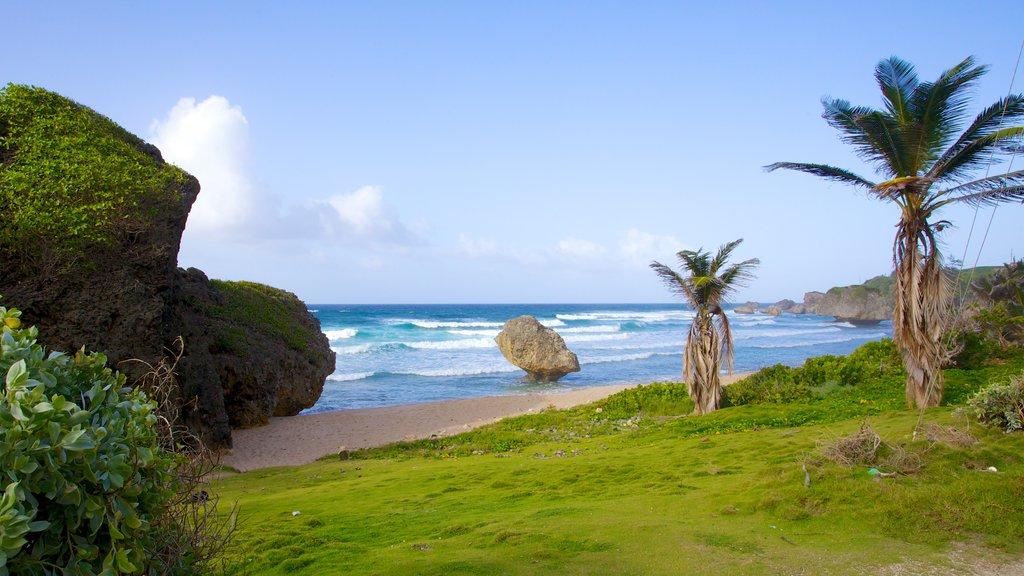 Bathsheba featuring tropical scenes, a beach and landscape views