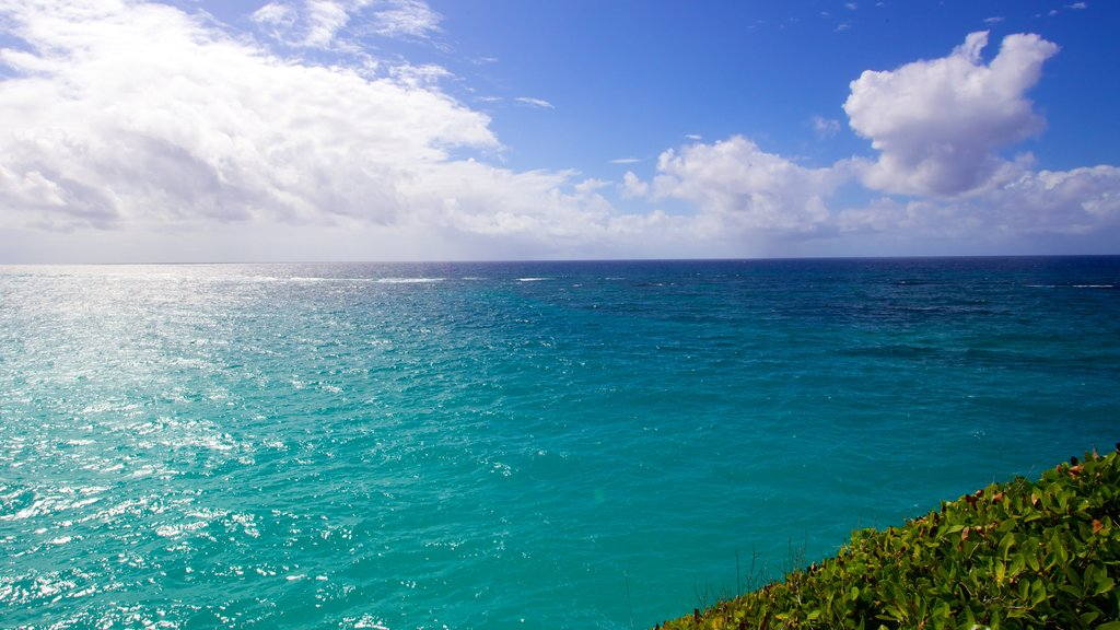 Crane Beach showing general coastal views and landscape views