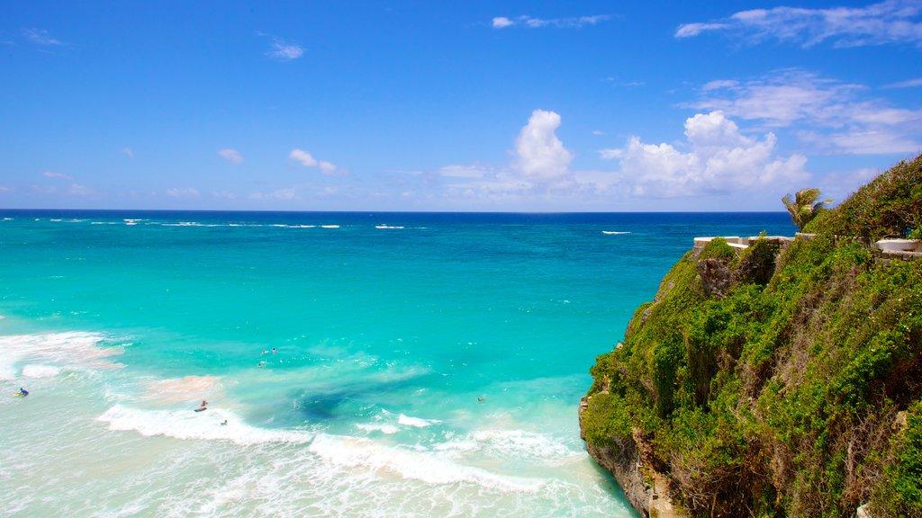 Crane Beach which includes tropical scenes, rocky coastline and landscape views