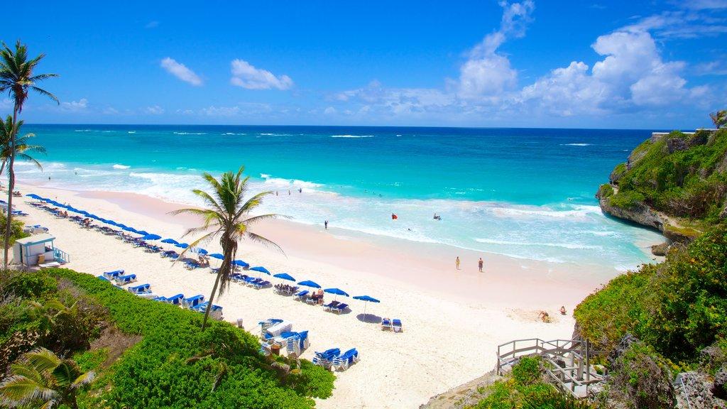 Crane Beach featuring tropical scenes, a beach and a coastal town