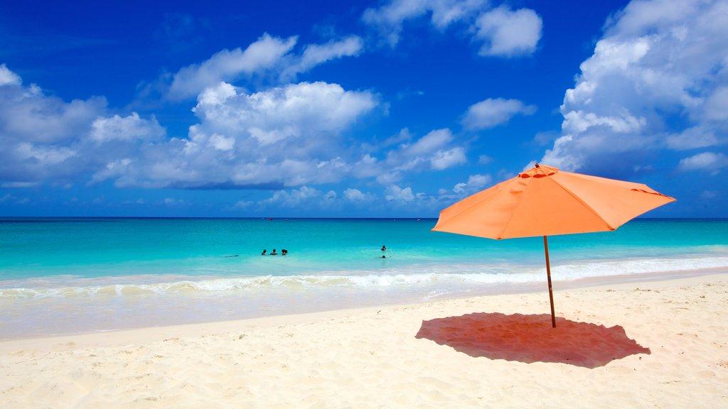 Miami Beach featuring a sandy beach and landscape views