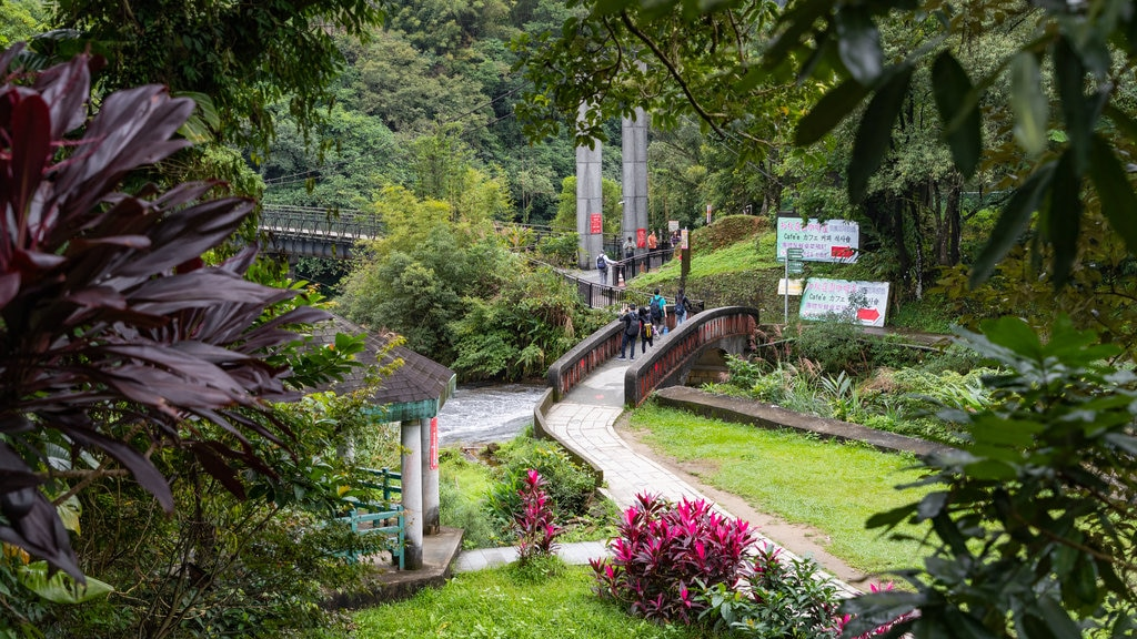 Shifen Waterfall showing a garden and a bridge