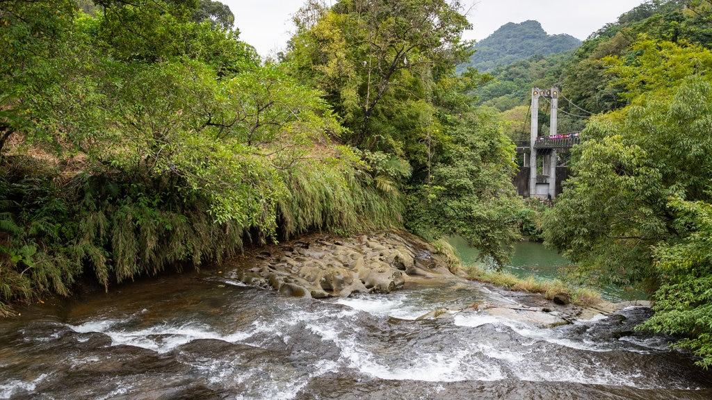 Shifen Waterfall showing a bridge, a river or creek and rapids
