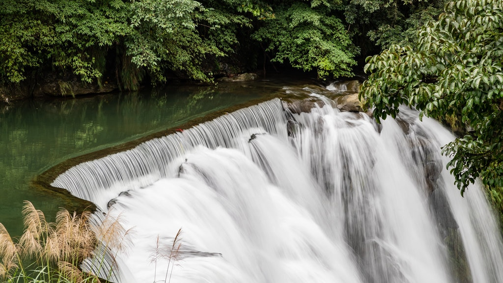 Shifen Waterfall showing a waterfall and a river or creek