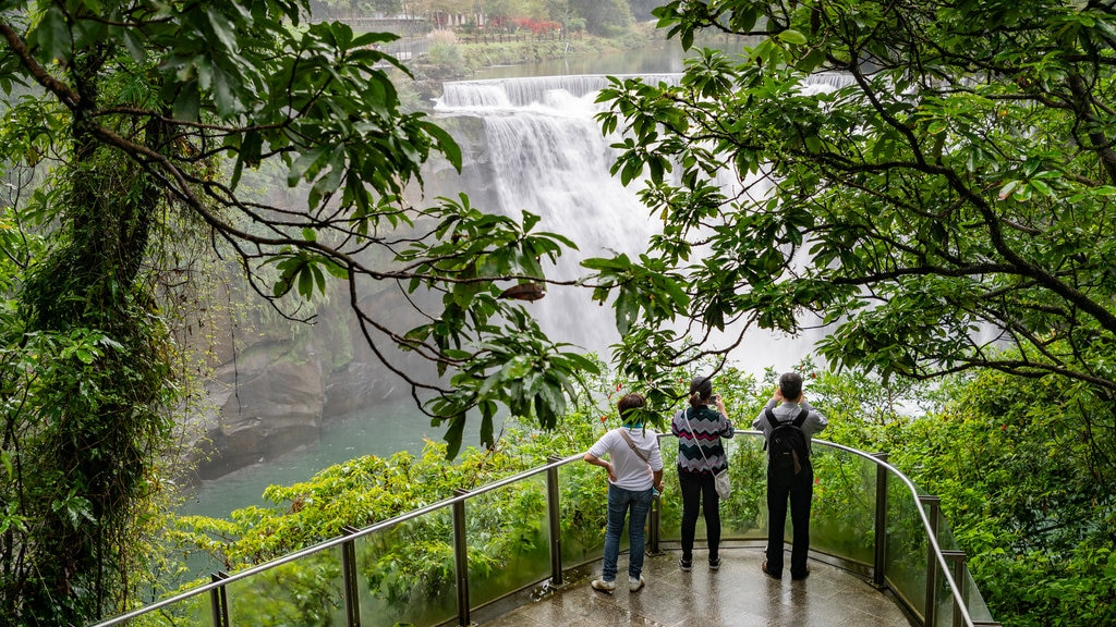 Shifen Waterfall which includes a cascade and views as well as a small group of people