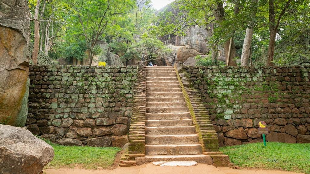 Sigiriya showing heritage elements and a garden