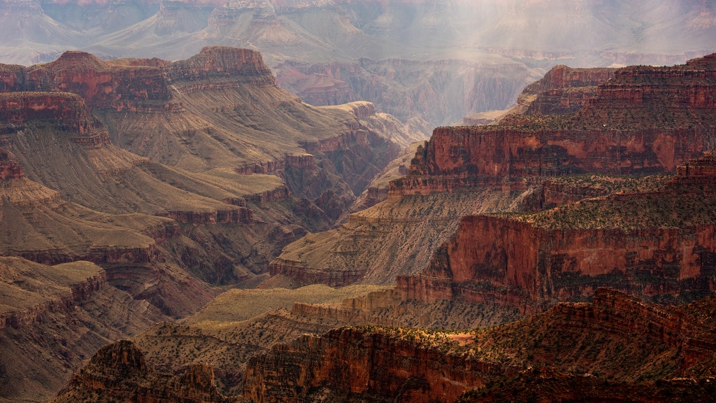 Grand Canyon which includes a gorge or canyon and landscape views