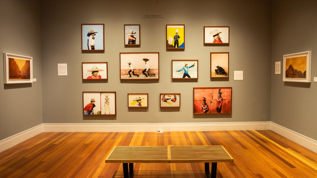 Ogden Museum of Southern Art featuring art and interior views