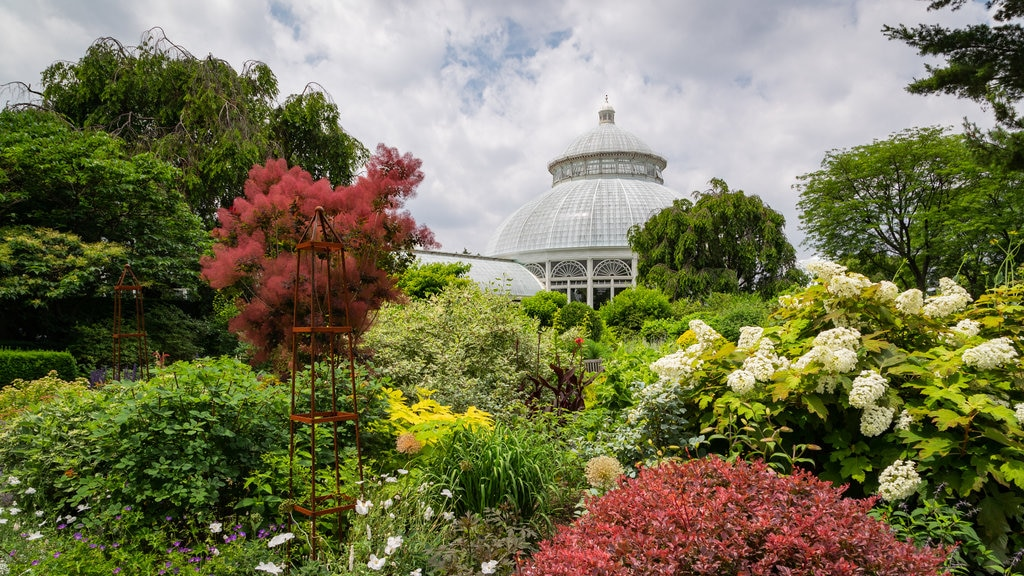 New York Botanical Gardens featuring wildflowers and a garden