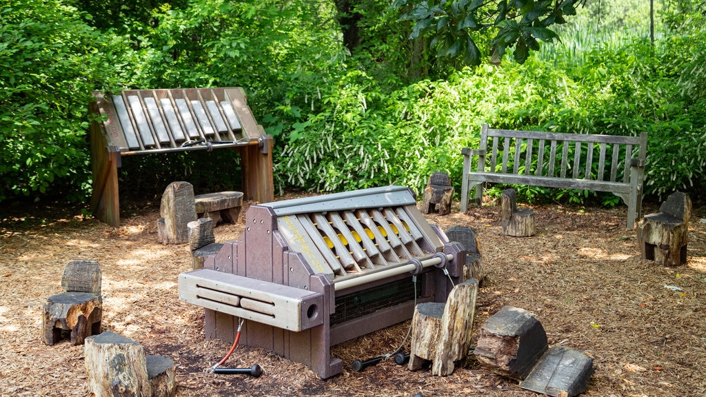 Everett Children\'s Adventure Garden showing a park