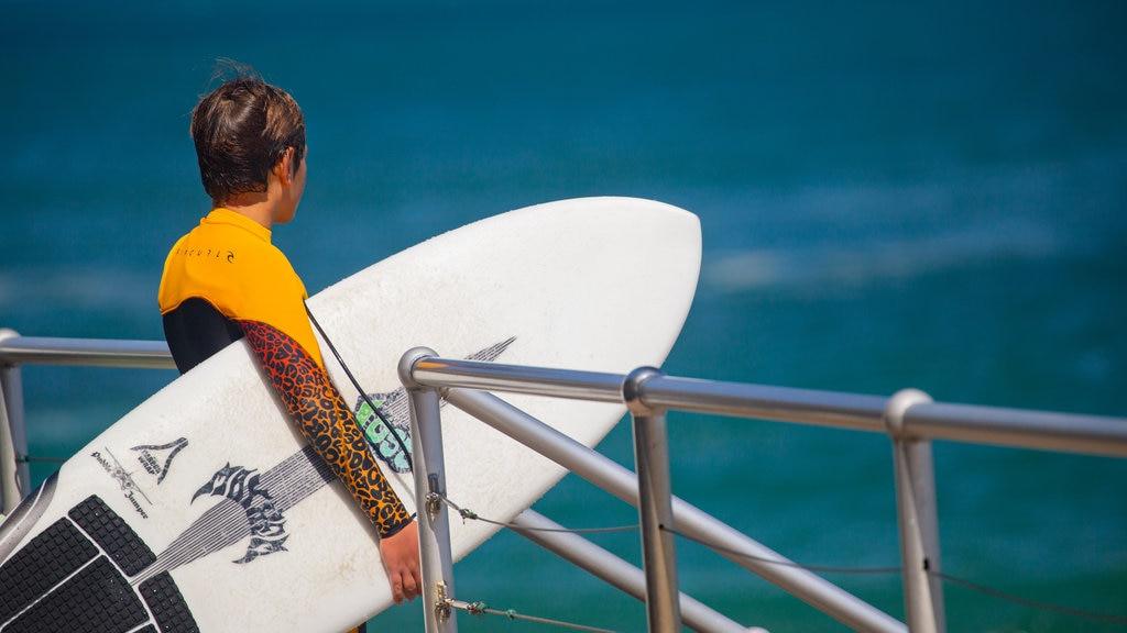 Bondi Beach which includes surfing and general coastal views as well as an individual male