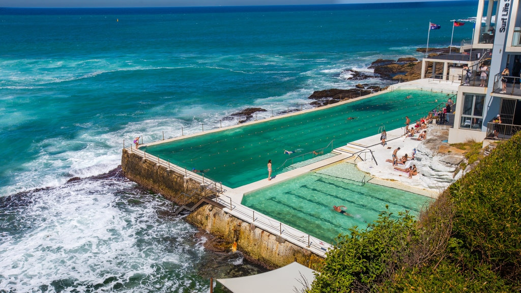 Bondi Beach which includes a pool and general coastal views