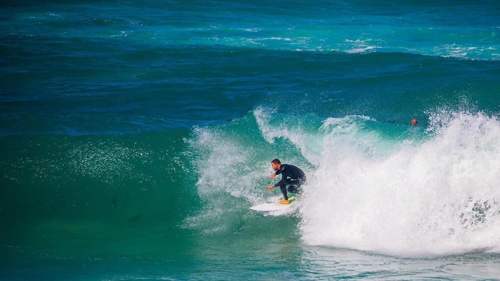 Bondi Beach showing surfing, surf and general coastal views