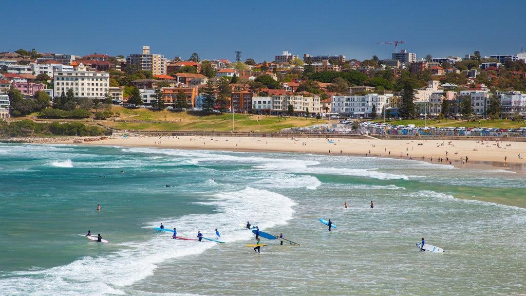 Bondi Beach featuring a coastal town, a sandy beach and general coastal views