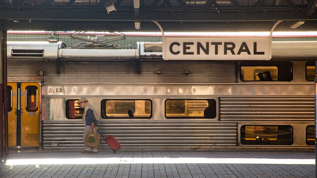 Sydney which includes railway items and signage as well as an individual femail