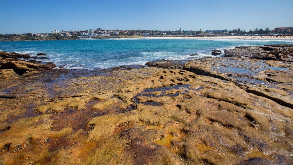 Bondi Beach featuring general coastal views and rugged coastline