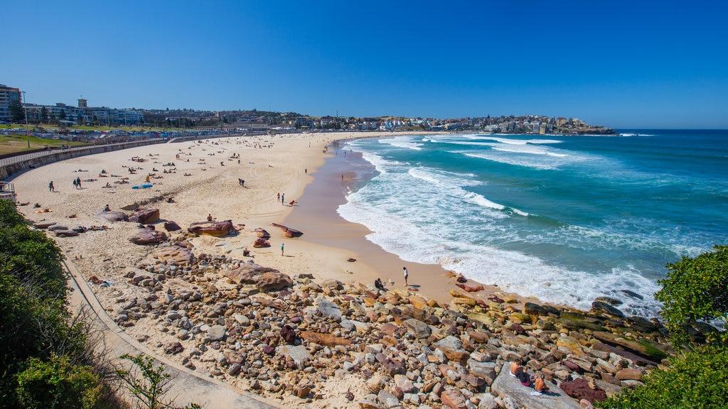 Bondi Beach which includes general coastal views and a beach