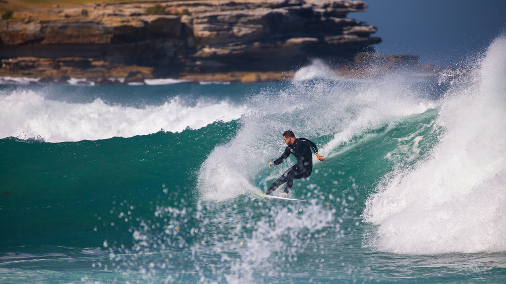 Bondi Beach featuring surf, surfing and general coastal views