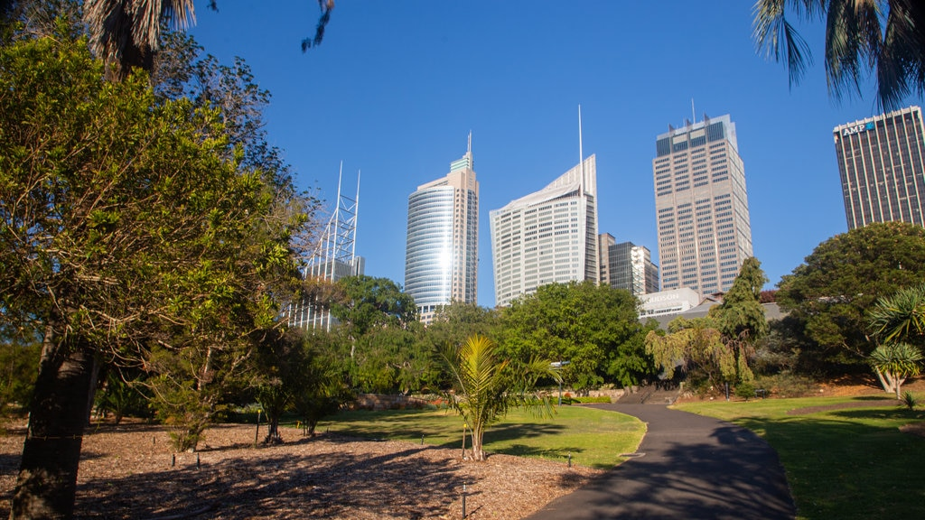 Royal Botanic Gardens which includes a garden and a city