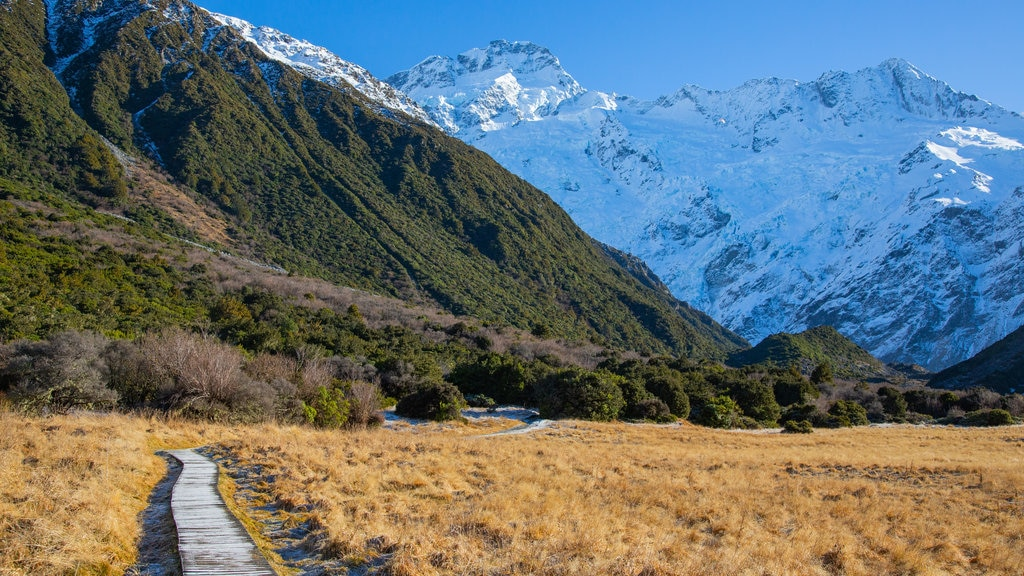 South Island featuring snow, mountains and tranquil scenes