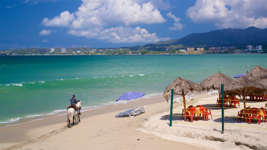 Bucerias which includes horseriding, general coastal views and a sandy beach