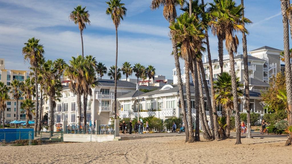 Santa Monica Beach showing a coastal town and a beach