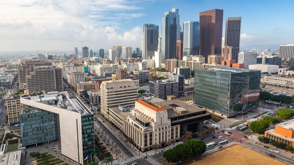 Downtown Los Angeles showing a city and landscape views