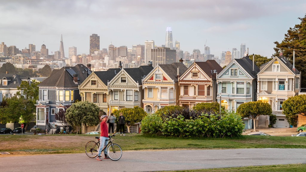Painted Ladies which includes cycling as well as an individual male