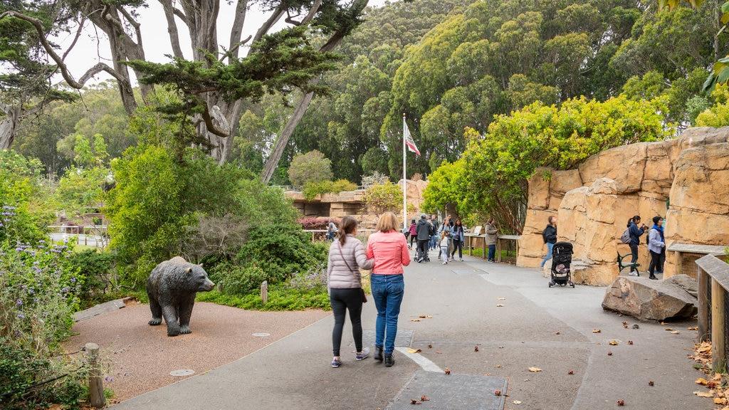 San Francisco Zoo which includes a garden as well as a couple