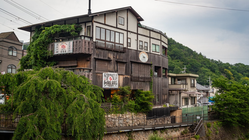 Arima Hot Springs featuring a small town or village