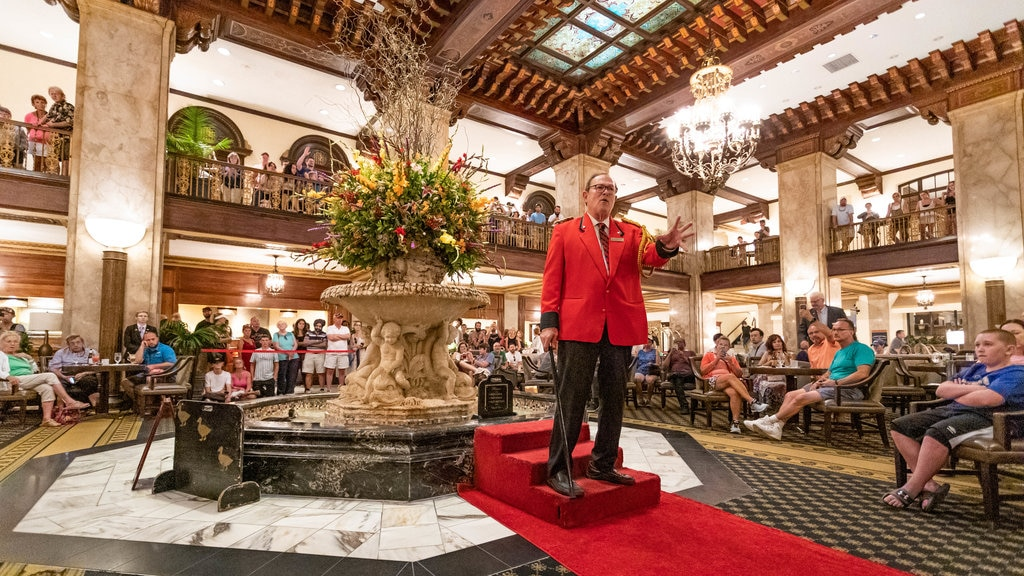 Peabody Ducks showing performance art as well as an individual male