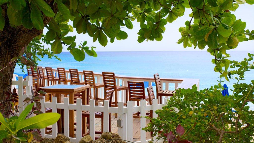 Mullins Beach featuring tropical scenes, general coastal views and a coastal town