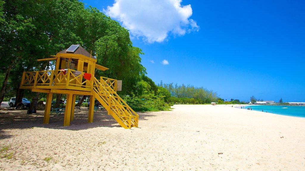 Brighton Beach showing a beach
