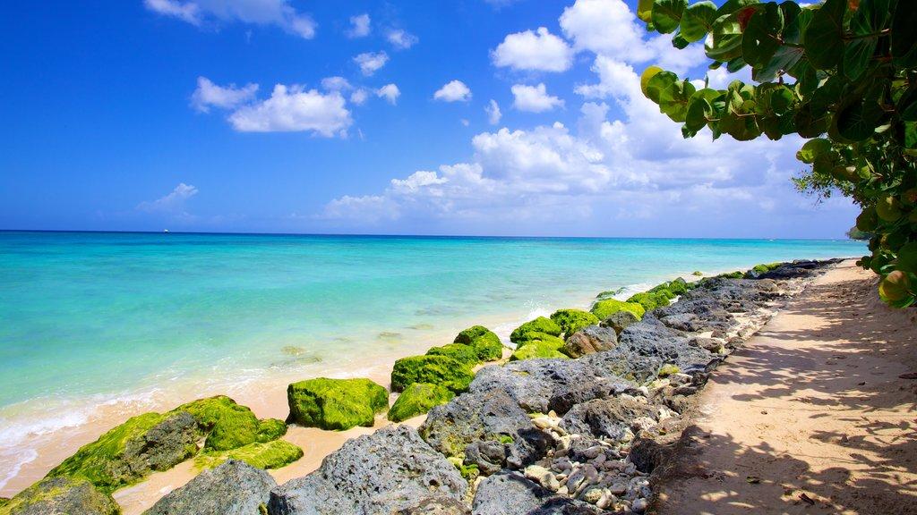 Paradise Beach showing landscape views and a sandy beach